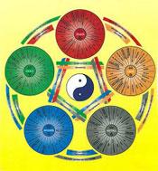 Wandlungen der 5 Elemente
